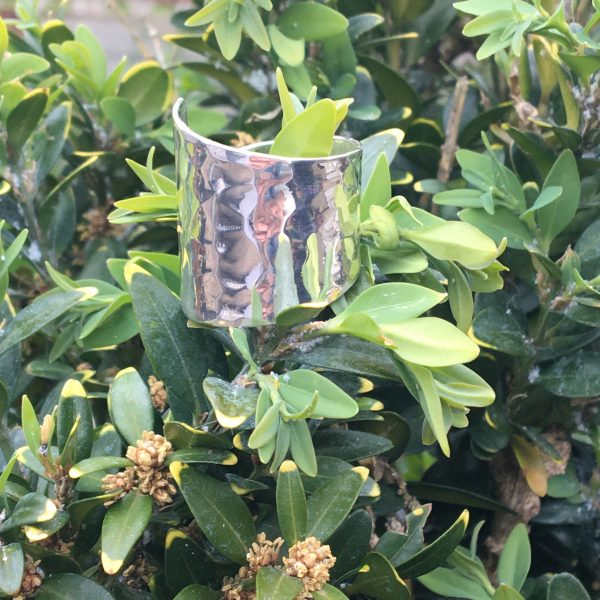 silver cuff ring on leaves